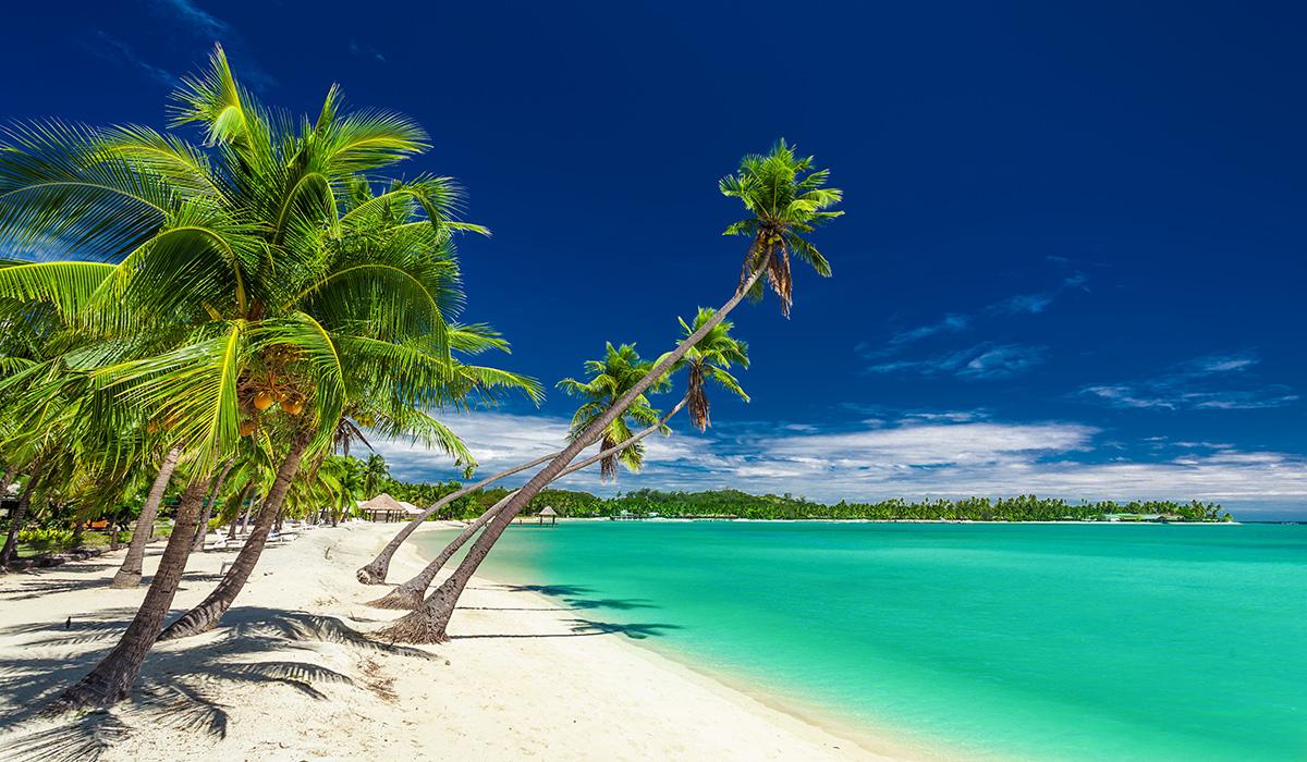 Tropická pláž s kokosovými palmami na Fidži