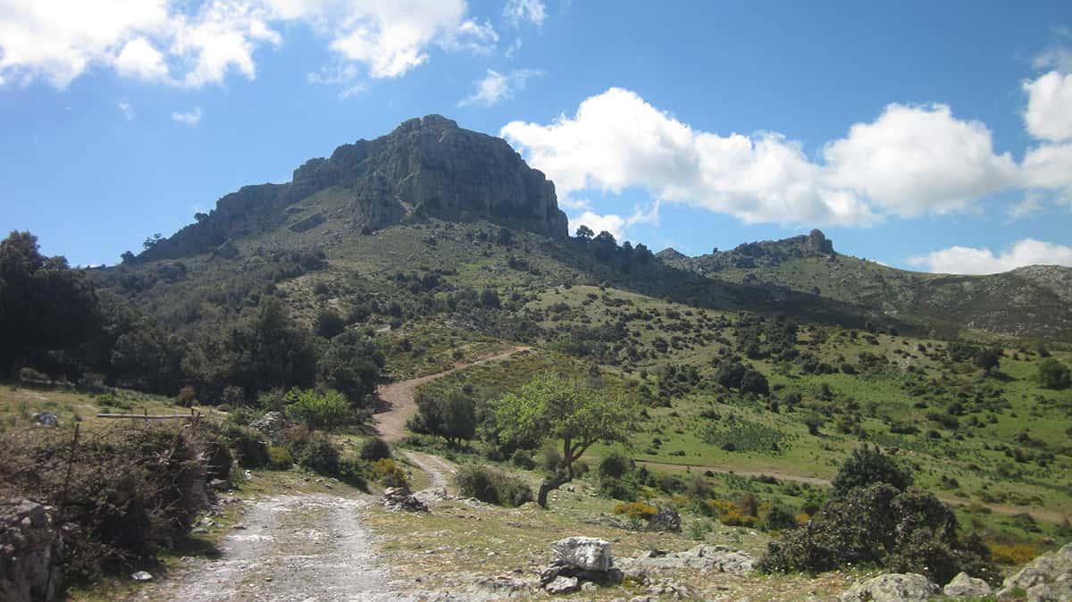 Monte Fumai
