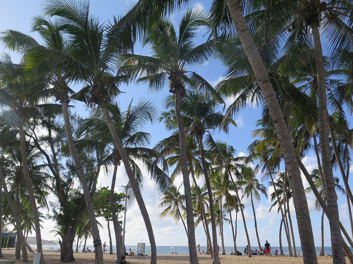 Escabron Beach